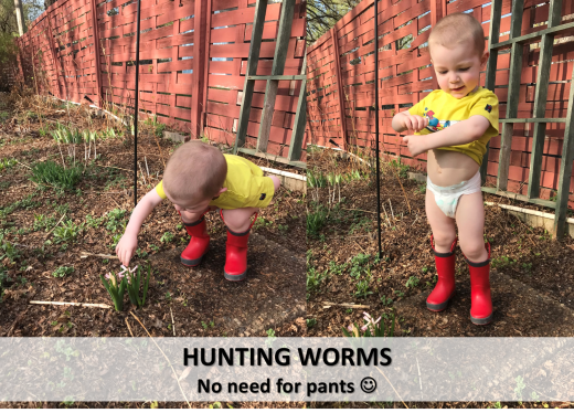 Hunter Worms